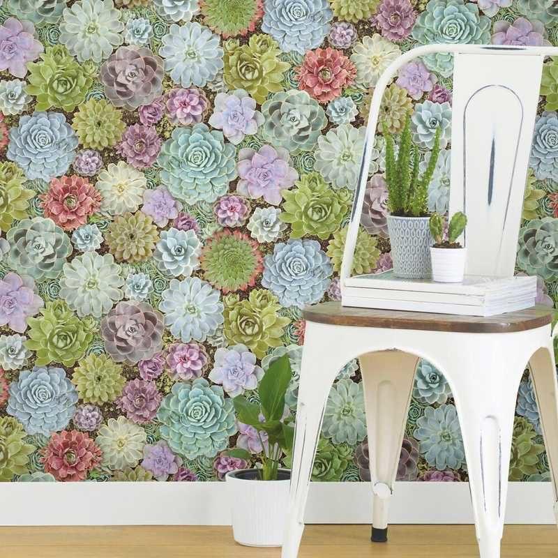 kalotaranis.gr-peel and stick wallpaper,decoration,flowers,succulents
