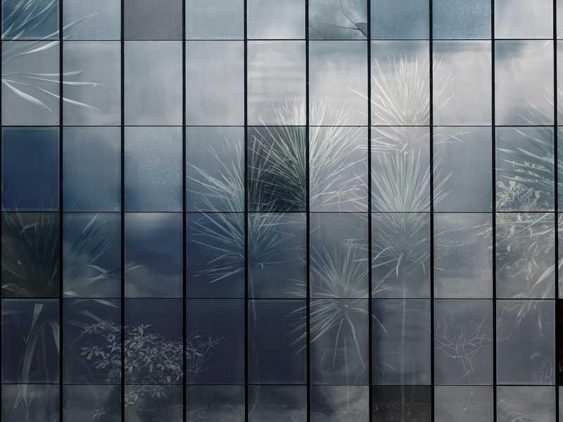 kalotaranis.gr-παράσταση τοίχου,παράθυρα,κήπος,φυτά