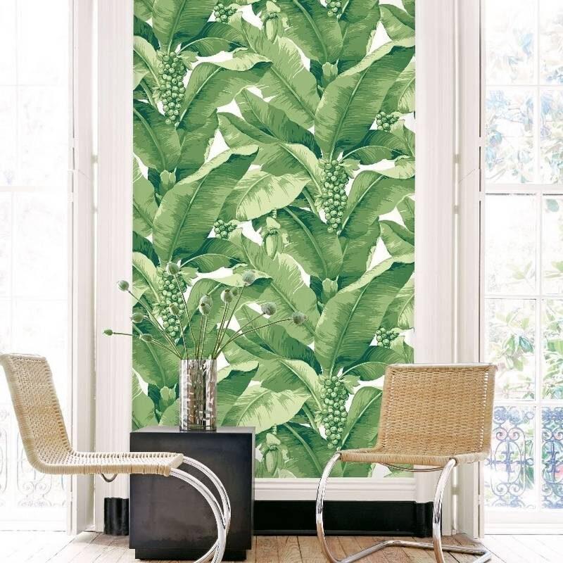 kalotaranis.gr-ταπετσαρία τοίχου,φύλλα,κλαδιά